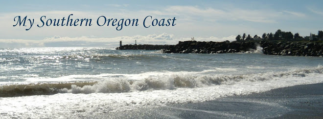 My Southern Oregon Coast