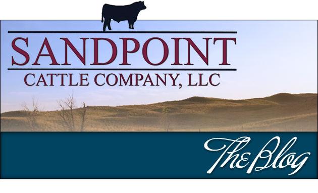 The Blog from SandPoint Cattle Company
