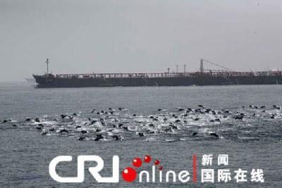 http://sofadasala-noticias.blogspot.com.br/2009/04/china-golfinhos-rechacam-ataque-pirata.html