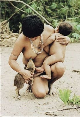breasfeed on ... Weird News: Awa-Guaj�: The indigenous women who breastfeed animals
