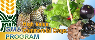 GMA High Value Crops Program