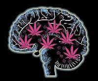 cerebro, marihuana