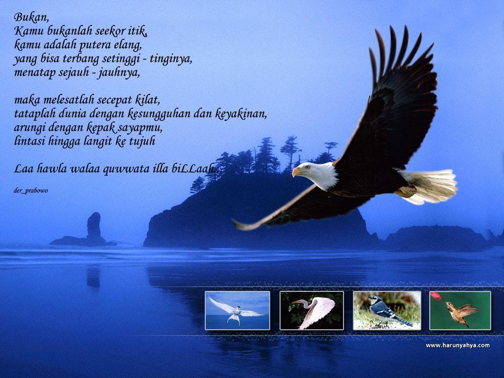 http://4.bp.blogspot.com/_8QNVF50kuyo/THoGnTe6DwI/AAAAAAAAAkY/GubYcg3Cr4s/s1600/w4.jpg