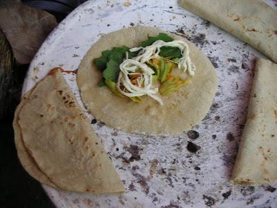 Temple Cuisine: Quesadillas De Flor De Calabaza