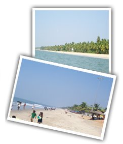Hotels in cherai,cherai beach - Kerala - India