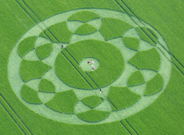 Crop Circle - Mexican Cockfight