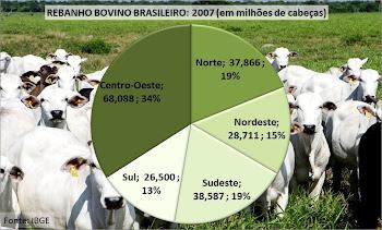 Pecuária Bovina no Brasil