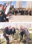 34 Arboles de Olivo por la Paz en Palestina, plantados en ciudades argentinas desde 1993