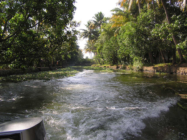 The powerboat running through a weed infested waterway in Alleppey, Kerala, India with trees on both sides