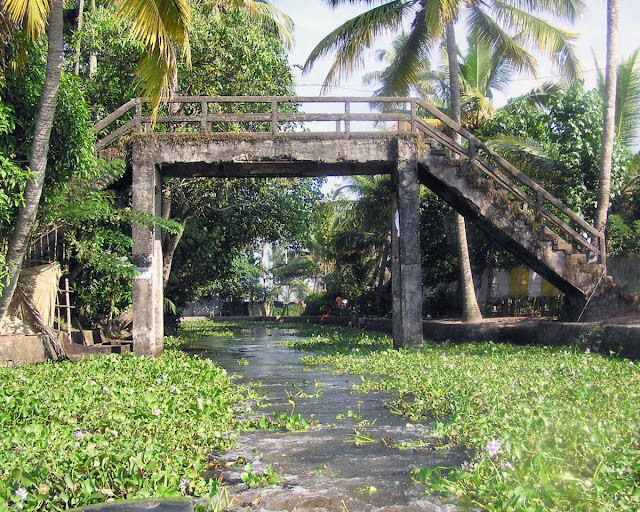 Photo of A small stone bridge in Kerala, near Alleppey, over a weed infested creek