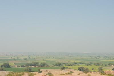 Greenery surrounding Fatehpur Sikri