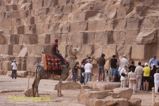 Cairo Pyramid - Tourists and a camel at the base of the Great Pyramid in Giza