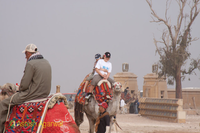 Cairo Pyramids - Tourists on a camel near the Great Pyramid of Cheops at Giza