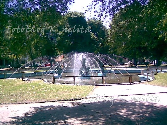 foto de la fuente de plaza Rocha