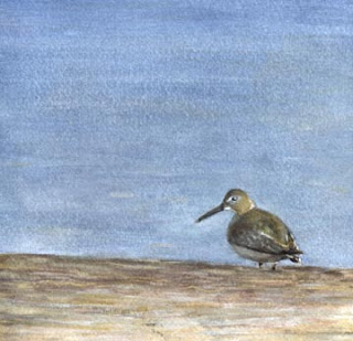 Sandpiper on Log - Nancy Van Blaricom