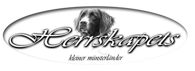 Herrskapets Kleiner Münsterländer