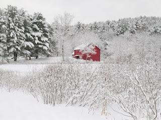 New Year Snowfall Wallpapers
