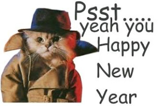 caty wishing happy new year