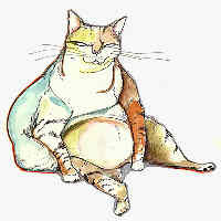 Obese Cat