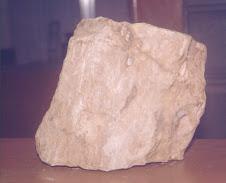 Municipal Fossil of Sibalom