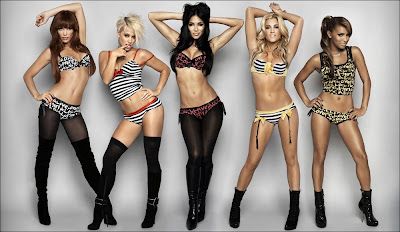 Pussycat dolls lingerie collection — 3