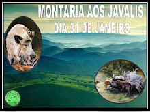 MONTARIA AOS JAVALIS