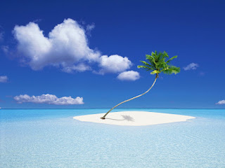 wallpapper_island_with_coconut tree