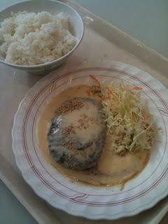 早稲田大学所沢キャンパス学食の白みそ風味ハンバーグ