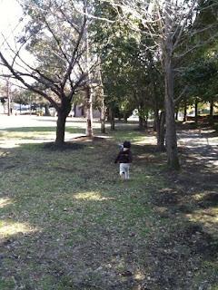 越谷市キャンベルタウン公園で鳩を追いかける息子