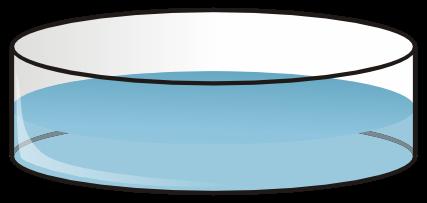 Diseño con vectores