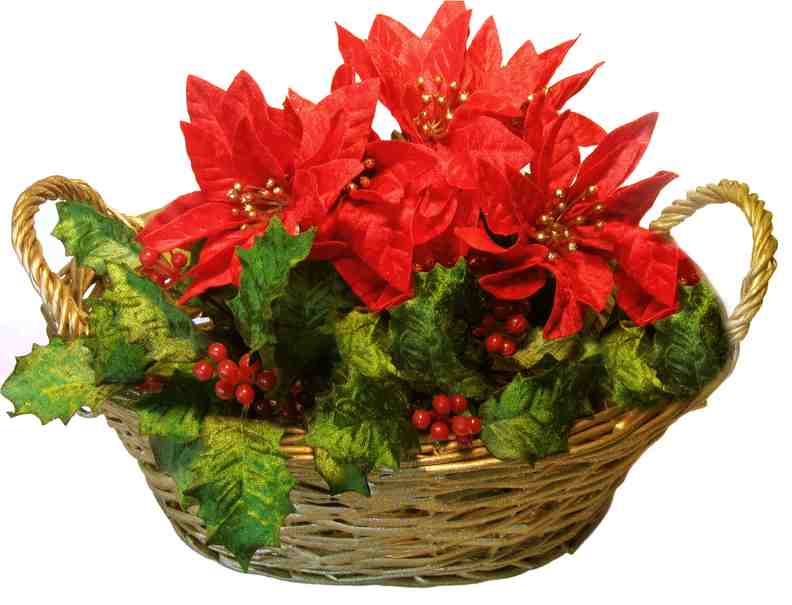 Christmas gift ideas christmas flower basket ideas for Poinsettia arrangements