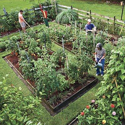 Vegetable Garden Fence Ideas Japanese Garden Design