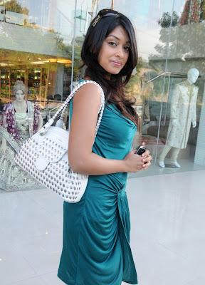 Payal Ghosh Hot Photo shoot