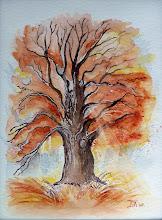 Herfstboom met doorschijnende zonnenstraal (te koop)