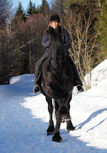 Hästar i mitt liv