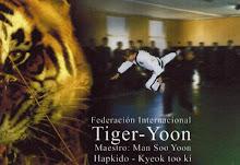Master Tiger Yoon