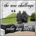 Color Key Challenge
