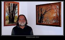 Exposicio Torrellas