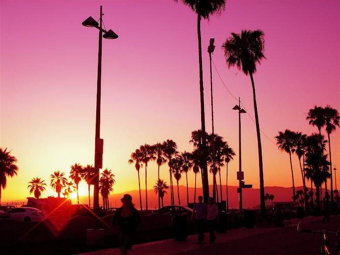 Californicas