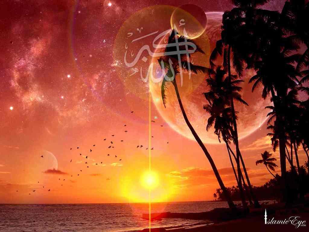 http://4.bp.blogspot.com/_8l1WXpAbvhk/TOGu-gWkY5I/AAAAAAAAB1c/yyK0Pz2lwKU/s1600/wallpaper4.jpg