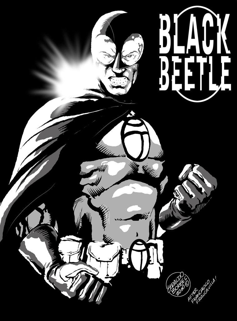 http://4.bp.blogspot.com/_8ltlkpaNNDw/TIFEizxx2RI/AAAAAAAAAZQ/Kw7egl1Gzt8/s1600/Black+Beetle+web.jpg