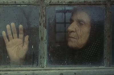 نمایی از فیلم طبیعت بیجان.