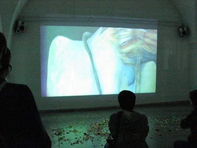 Centro Cultural Recoleta  X Festival  Internacional de VideoDanzaBA