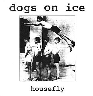 Dogs On Ice - Salt Wound
