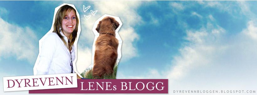 Dyrevenn Lenes blogg