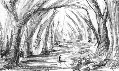Sketches Pictures of a Forest Forest Sketches