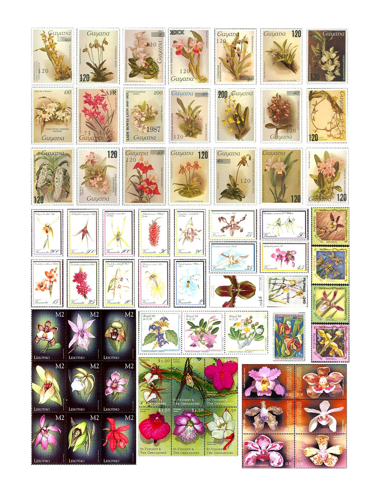 [OrchidStamps2150.jpg]