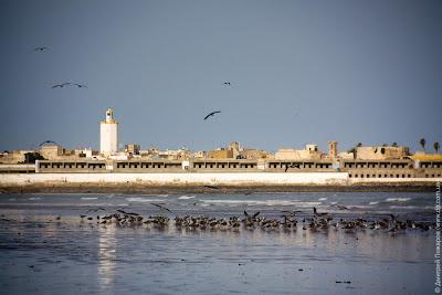 Марокко. Эль-Джадида. Morocco. El Jadida