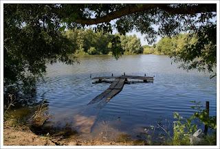 Дмитровка (пруд)