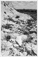 Оскол (Каменка)